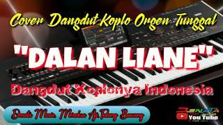 Dalan liane, lagu terbaru cover dangdut koplo denata music orgen tunggal/2020