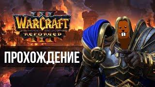 Прохождение Warcraft III: Reforged с Майкером 7 часть (Высокий) + FFA