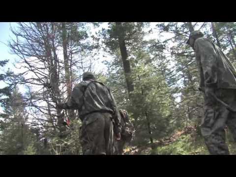 Ramos Hunts & Video Reggie Theus Elk 2009 Archery Hunt