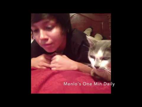 One Minute Daily Animal Vines 3-30-2017