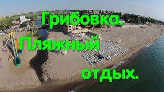 Грибовка. Море. Пляж. Отдых. Горки. Цены на жилье. Пляжи Одещины. Одесса. Курорт. Отпуск. Украина.