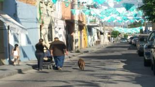 Contaminacion en Tala, Jalisco.