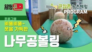 [체험존] 큰삼촌농촌체험 프로그램-나무공볼링