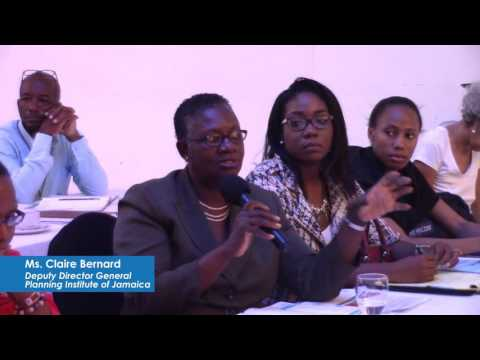 UNDP Jamaica: Int'l Development Partners advocate for Climate Change database at JCCCP Launch