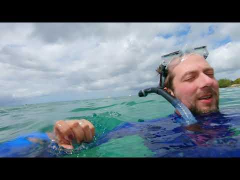 Barbados - Folkstone Marine Park, Holetown Boardwalk & Paynes Bay