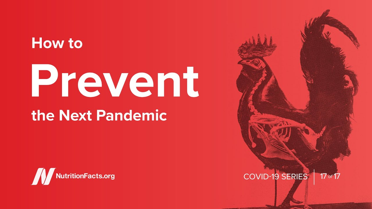 How to Prevent the Next Pandemic PLUS Dr. Greger's New Book