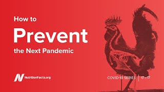 How to Prevent the Next Pandemic PLUS Dr. Greger&#39s New Book