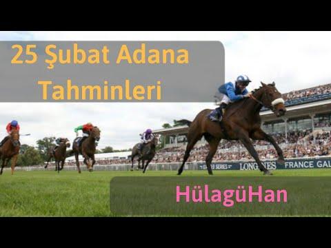 25 Şubat Adana Altılı At Yarışı Tahminleri Ve Altılı Için Bankoları - TJK