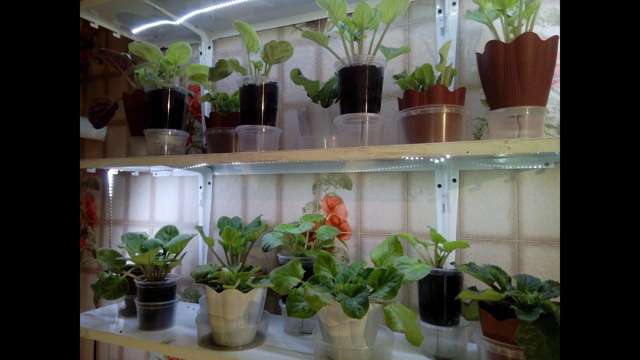Лампа светодиодная для растений uniel e27 9 вт 250 лм свет красный: отзывы, фото,. Цена и наличие на 8 июня 2018 09:15. Рассады, тепличных и комнатных растений, а также для подсветки аквариумов и террариумов.