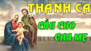 THÁNH CA CẦU CHO CHA MẸ ĐẶC BIỆT | Tổng Hợp Những Bài Thánh Ca Cầu Cho Cha Mẹ Hay Nhất