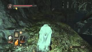 Dark Souls Ii Aldias Keep Locked Door
