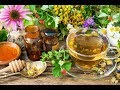 The Health Benefits of Black Tea and Herbal Teas by Pastor Mike CN