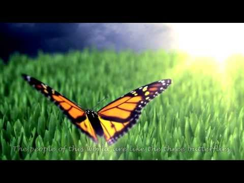 Poem of the butterflies - Rumi