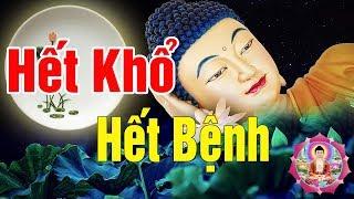 Ai Đang Khổ Đau bệnh Tật Đeo bám hãy Nghe Phật Dạy ĐỪNG KHÓC KHI ĐỜI ĐAU KHỔ - Lời Phật Dạy