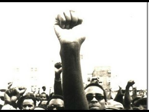 A Narrative History of Black Power in America: Identity, Culture, Equality, Integration (2007)