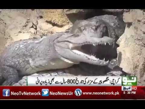 Karachi: History of Manghopir Crocodiles