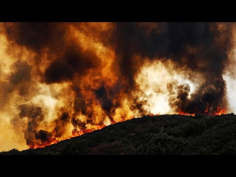 يورو نيوز:مقتل رجل إطفاء في كاليفورنيا بسبب حرائق الغابات