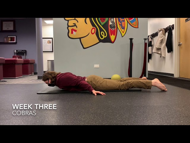 Prone Lumbar Extension (Cobras) with Lateral Flexion