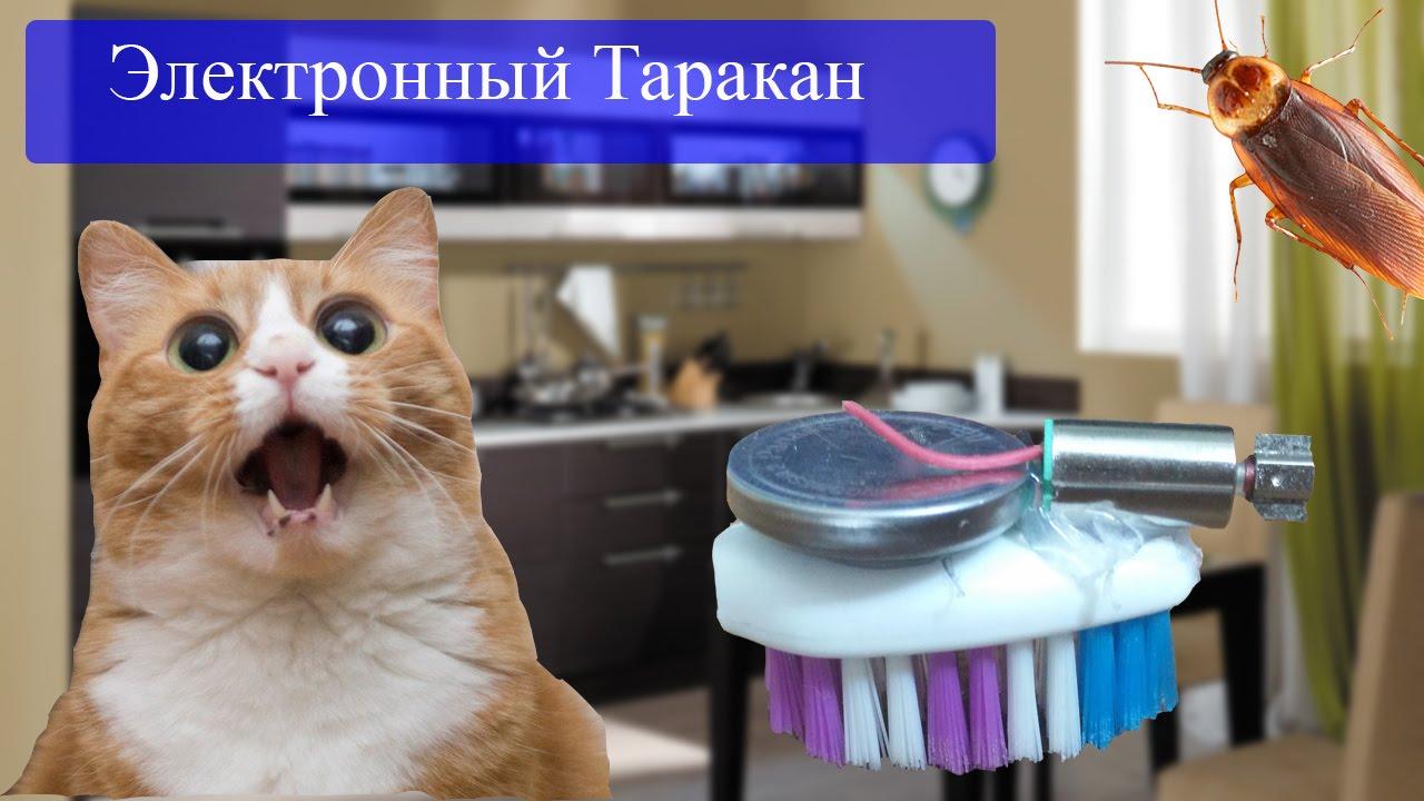 Какие игрушки можно сделать для котенка фото 624