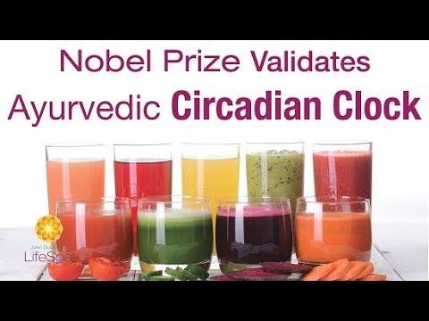 Nobel Prize Validates Ayurvedic Circadian Clock | John Douillard's LifeSpa