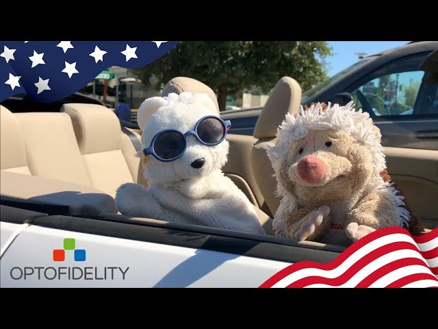 Furry friends visiting OptoFidelity's office in Silicon Valley