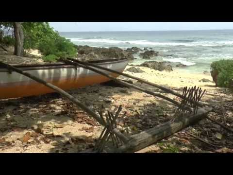Making a canoe / Couper la pirogue / Katem kenu (Vao, Malakula, Vanuatu)