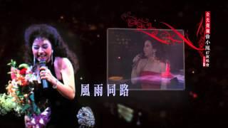 金光燦爛徐小鳳87演唱會 升級版3CD  首次隆重上市