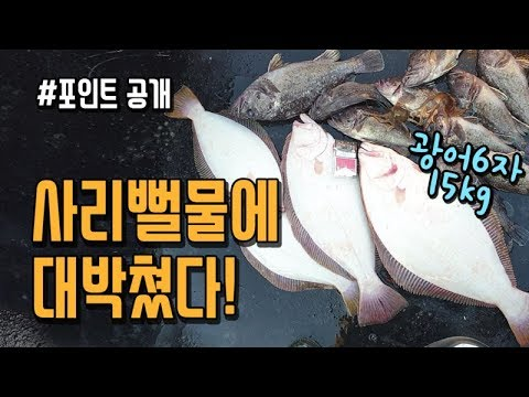 사리에 뻘물인데도 우럭 광어가 잡힌다? 살아있는 어초 공개합니다!