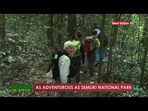 Pearl of Africa - As adventurous as Semliki national park