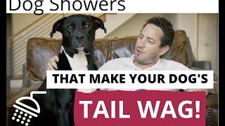 Indoor Dog Showers   Sardone Construction