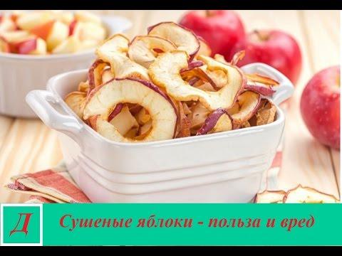 Как правильно сушить яблоки: подготовка, способы сушки