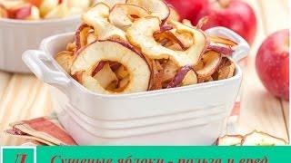 Сушёные яблоки  - польза, как сушить в домашних условиях