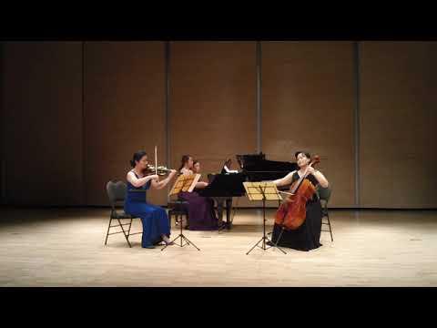 Hayden the gypsy trio 1st movement