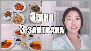 Мои любимые завтраки: сладкий, корейский обычный и завтрак в IKEA (ИКЕА)