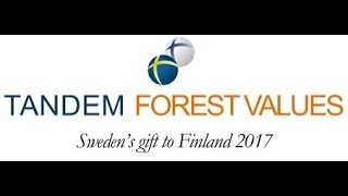 Tandem Forest Values 2017 - summary