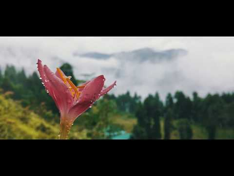 Monsoon in South Sikkim | A 4k Film