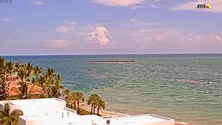 Preview of stream St. Lucie Live Inlet View
