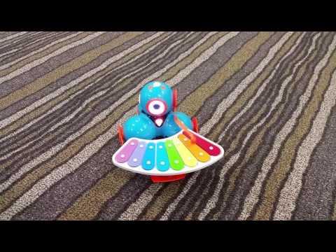 Dash Robot Playing Its Xylophone