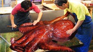 Incredible Giant Octopus Fishi…