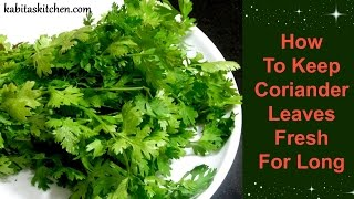 How To Keep Coriander Leaves Fresh For Long | Useful Kitchen Tip by Kabitaskitchen