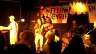 Mellow Mark & Pyro 02.07.2010 YAAM Berlin 1/2