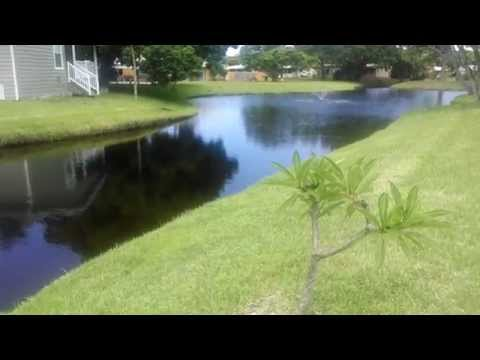 Mobile Homes for sale in Palm Beach Gardens FL 33410 - wwwTheMobileHomeWay.com