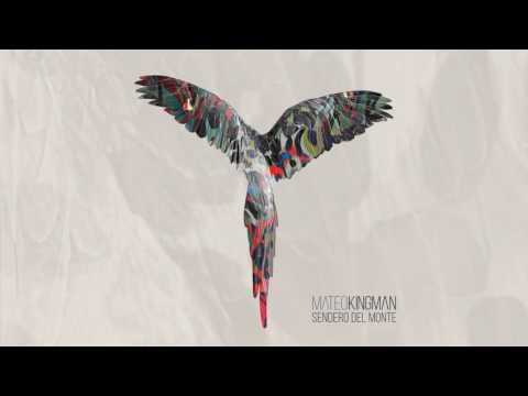 Mateo Kingman  infuse musiques urbaines avec l'impulsion de l'Amazonie équatorienne