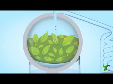 AROMA THERAPY BY TERRAMICA,  HOW STEAM DISTILLATION WORKS