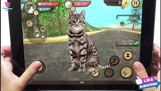 Cat Sim Online: Play with Cat Clan Pet Simulator Android Gameplay Tv Video