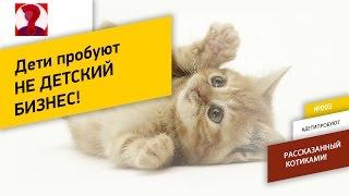 Дети пробуют Не детский бизнес - Котики из Meow gallery -  екатеринбург коты прикольные кошки