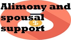 Alimony and Spousal Support in Michigan