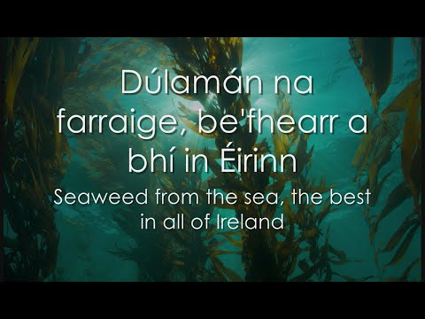 Dúlamán - LYRICS + Translation - Celtic Woman