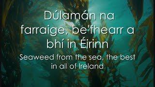 Dúlamán - LYRICS + Translation - Celtic Woman