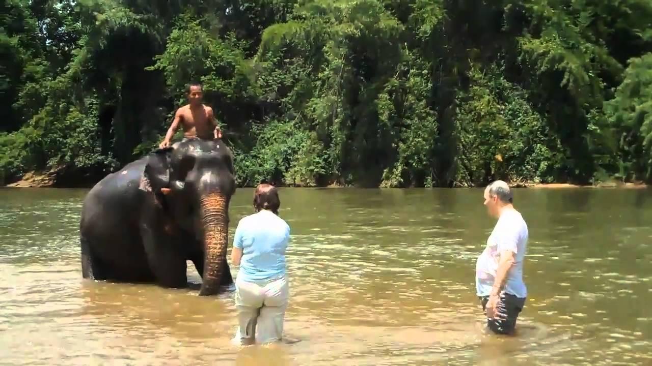 Travel: Thailand: Elephant Bath - YouTube